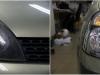 Renault_Thalia